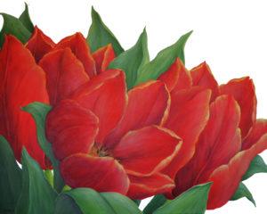 Tulpen 17 100 x 80